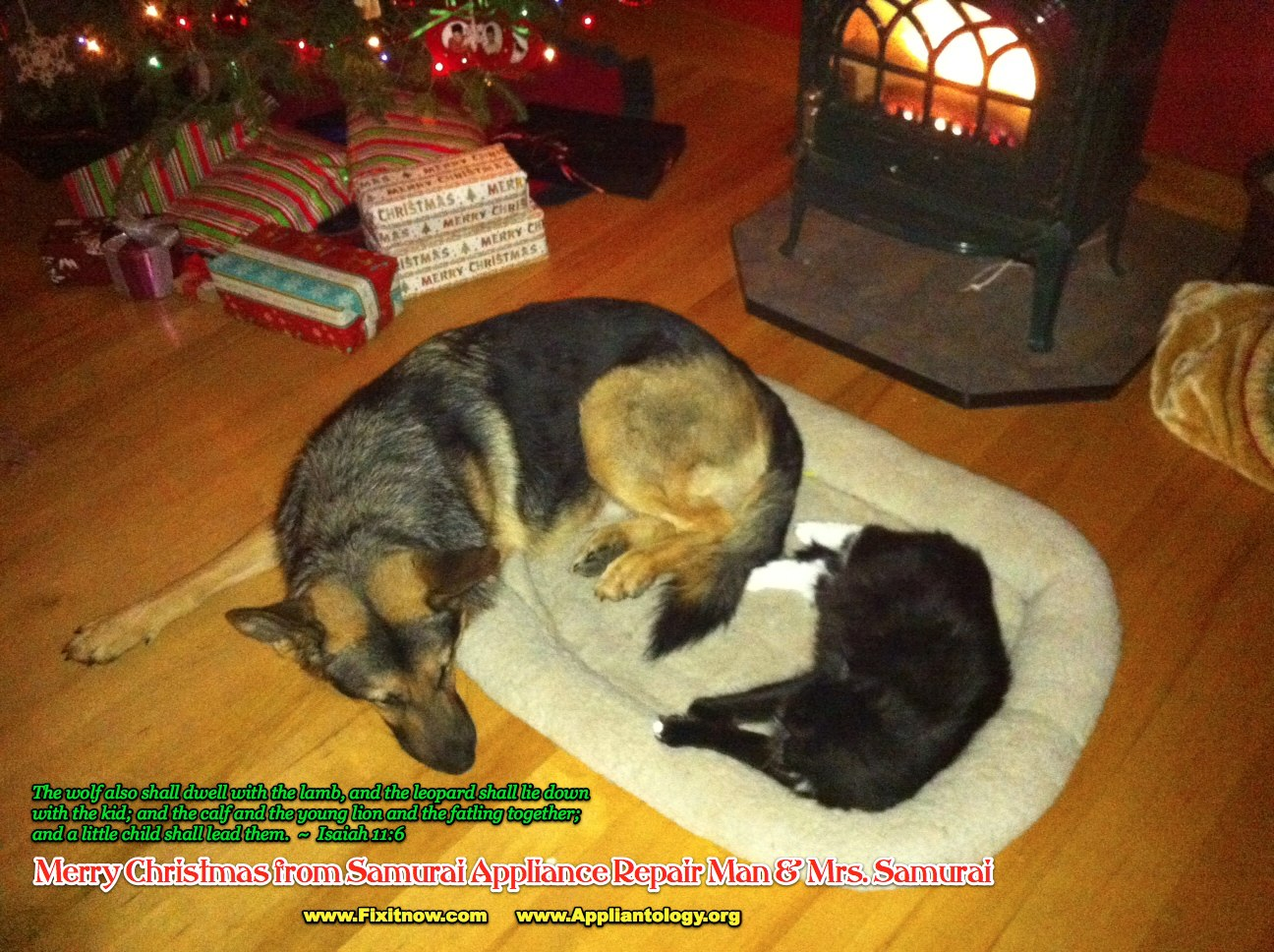 A Christmas Greeting from the Samurai's Hearth