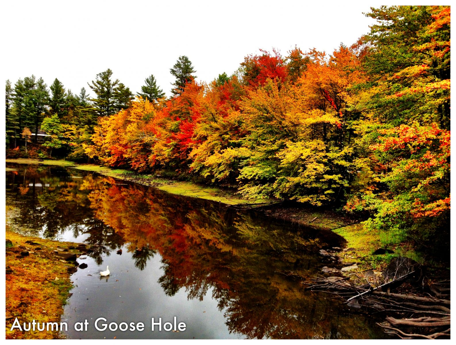 Autumn at Goose Hole