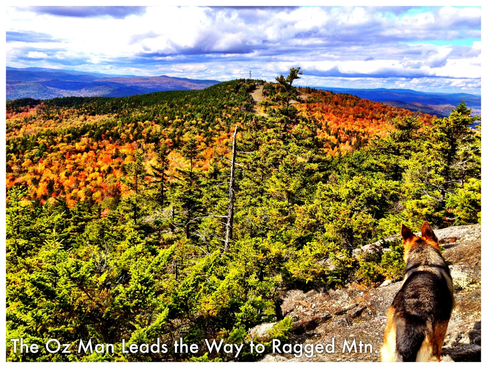 The Oz Man Leads the Way to Ragged Mountain