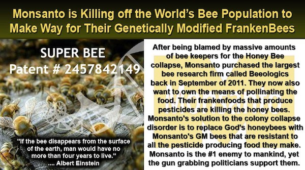 Monsanto&#39;s Super Bees