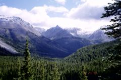 Views of the Canadian Rockies