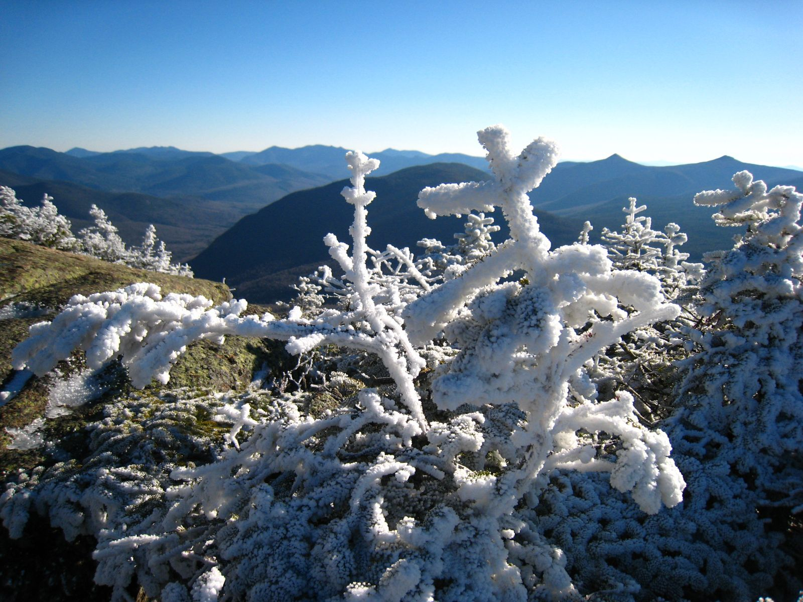 Close up of Rime Ice