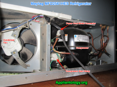 Compressor Compartment Anatomy in a Maytag MFD2561HES Refrigerator