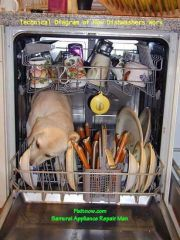 Organic Dishwasher