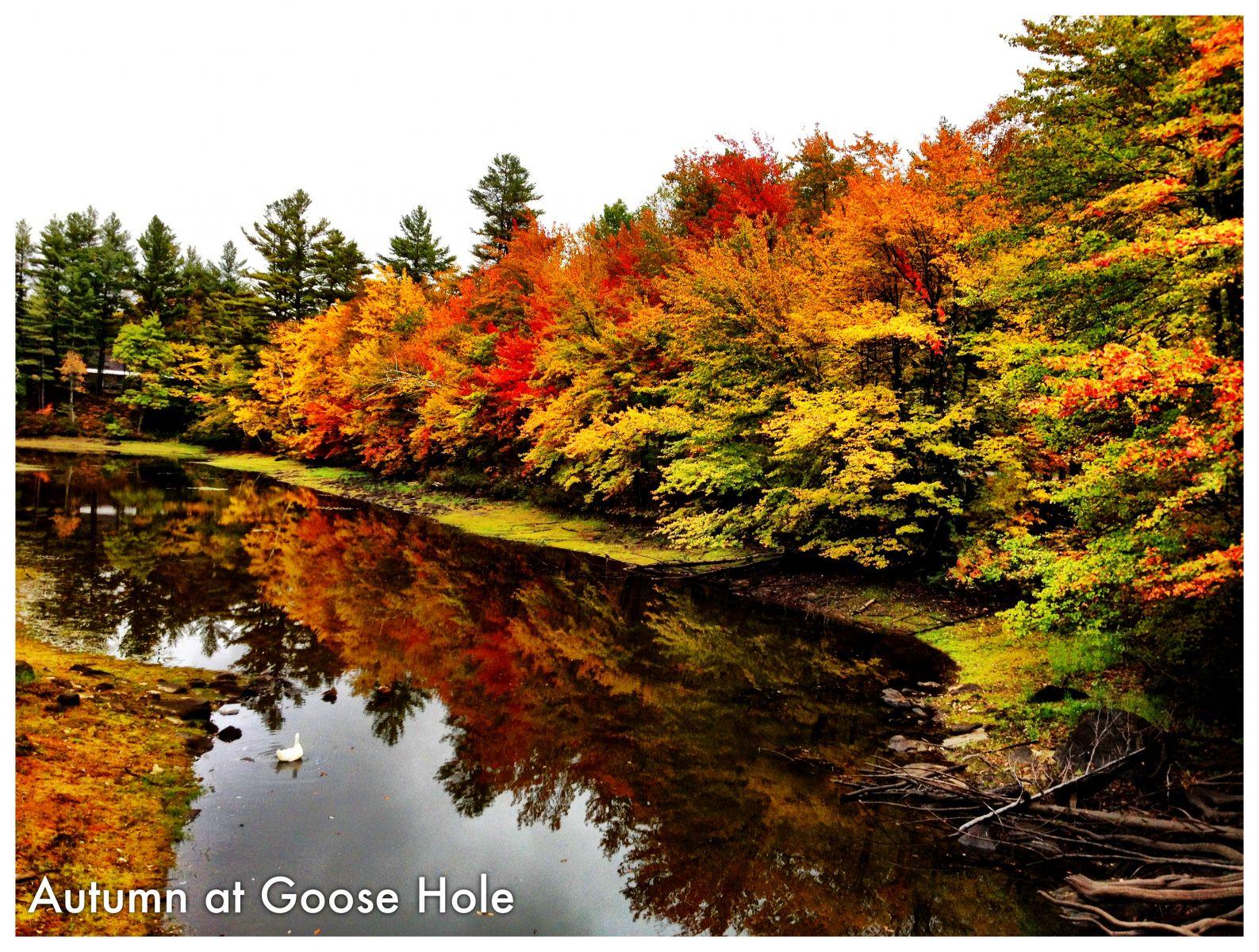 Autumn at Goose Hole