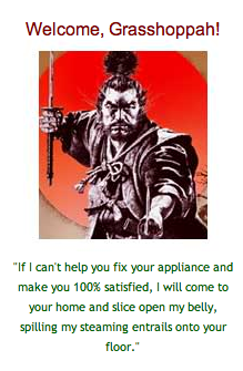samurai awesome avatar