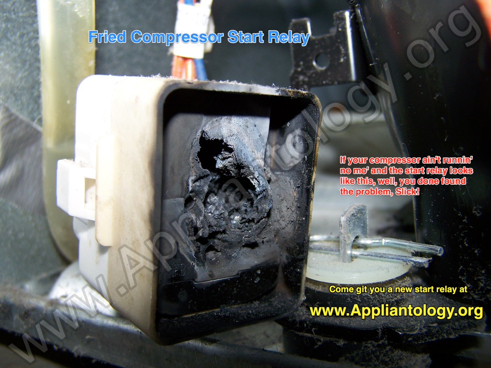 Fried Compressor Start Relay The Appliantology Gallery