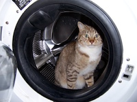 What Washer and Dryer would the Samurai Buy?