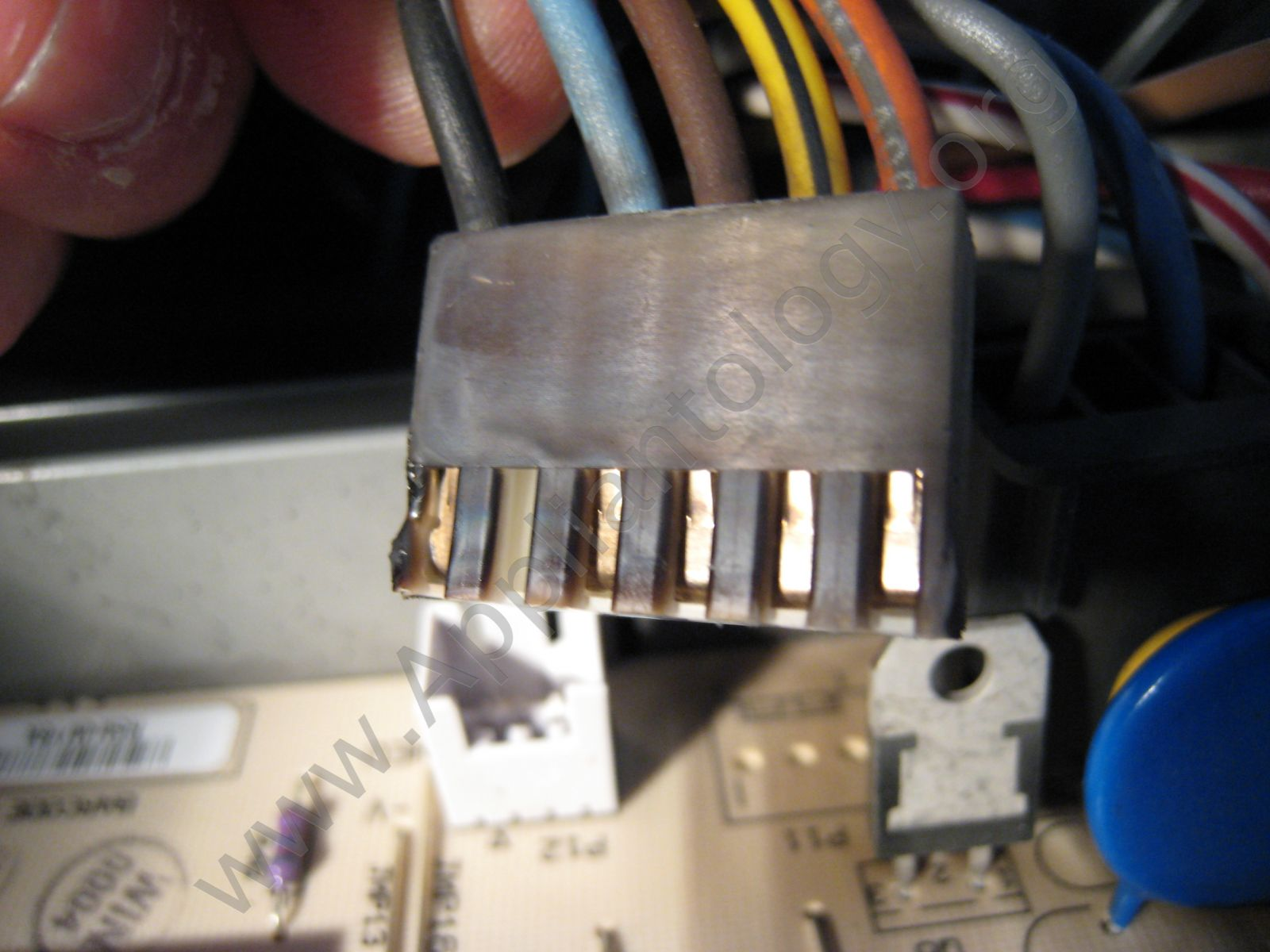 Back View Of The Wire Harness Connector That Caused Problem Wiring Repair Kitchenaid Dishwasher Control Board