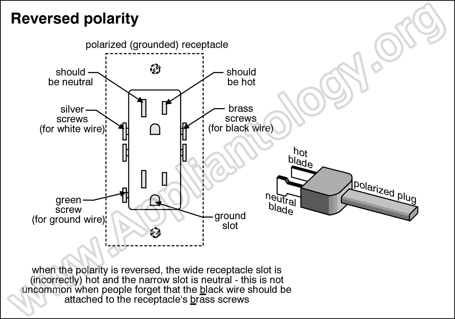 How To Check Electrical Outlet Polarity - The Appliantology Gallery ...