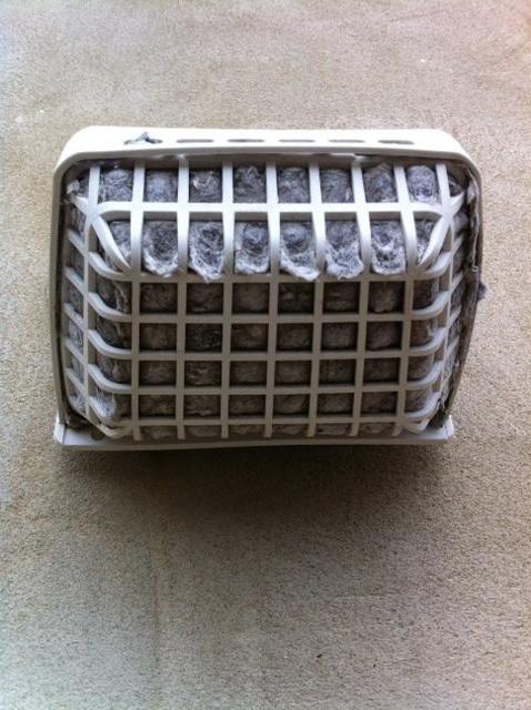 Dryer Vent Rats Nest