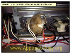 Photo Caption Contest Winner:  Gerbil Volt Tester