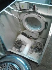 "whirlpool 24"" dryer"